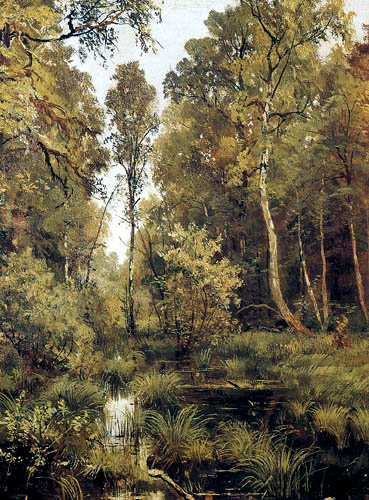 Iwan Schischkin - Pond at the edge of forest near Siwerskaja