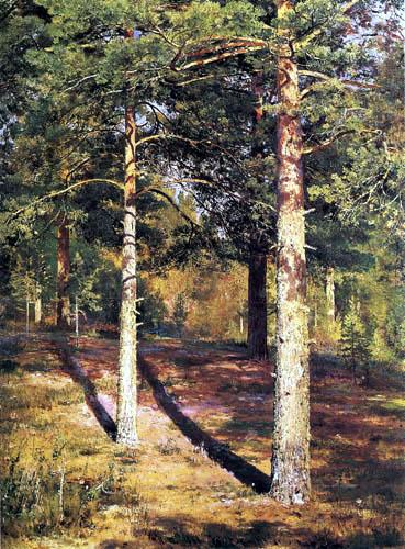 Iwan Schischkin - Pines in the sunshine, study