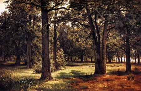 Iwan Schischkin - Oaks bosk in Sestrorestk