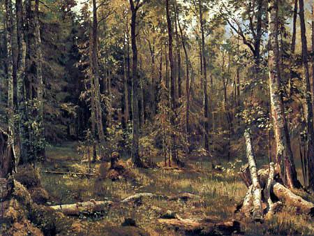 Iwan Schischkin - Forêt mélangée, Schmerzk près de Narwa