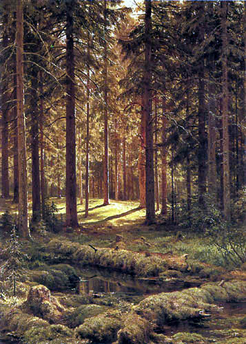 Iwan Schischkin - Coniferous forest on a sunny day
