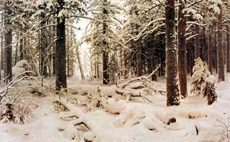Iwan Schischkin - Winter forest