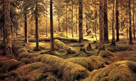Iwan Schischkin - Cemetery in the forest