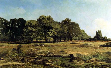 Alfred Sisley - Wooded landscape, Fontainebleau