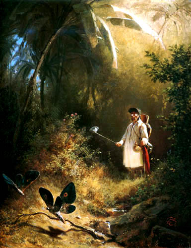 Carl Spitzweg - Butterfly catcher