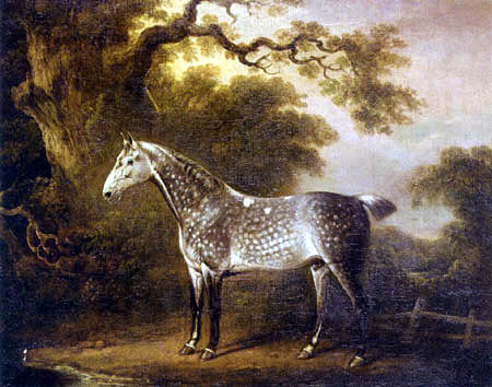 Charles Towne - A dappled grey hunter