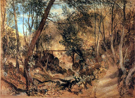 Joseph Mallord William Turner - The forest, Farnley Hall