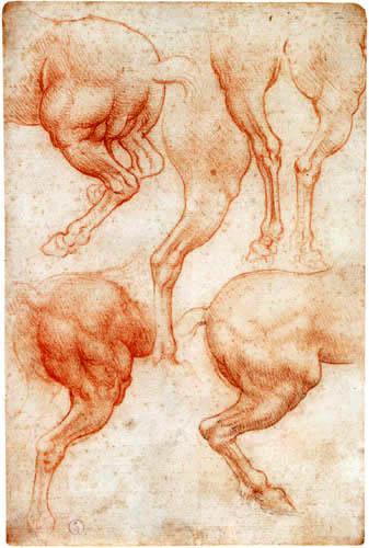 Leonardo da Vinci - Pferdestudien