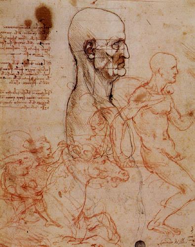 Leonardo da Vinci - Gesichtsproportionen und Reiterstudie