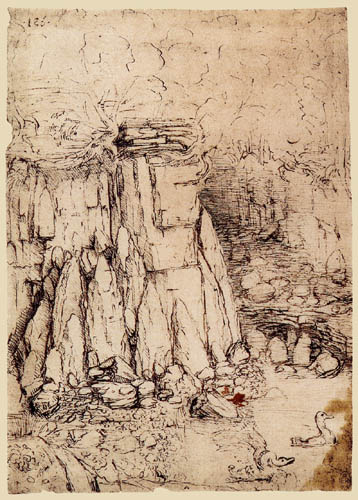 Leonardo da Vinci - Rocky gorge with ducks
