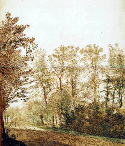 Cornelis Hendriksz Vroom - Country lane with a walker