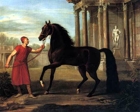 John Wootton - One of the Horses sent by Hadji Mahammad Cogia