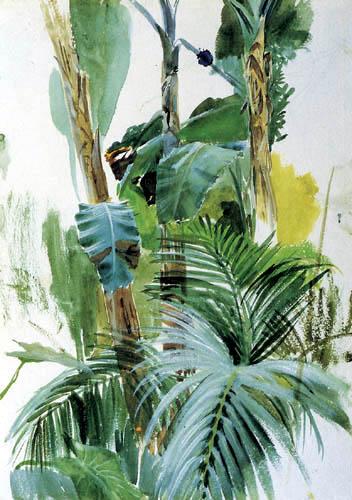 Anders Leonhard Zorn - Pflanzenstudie