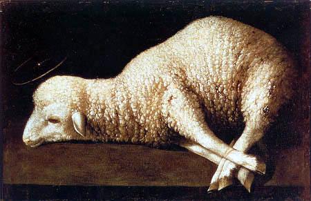 Francisco de Zurbarán - Agnus Dei